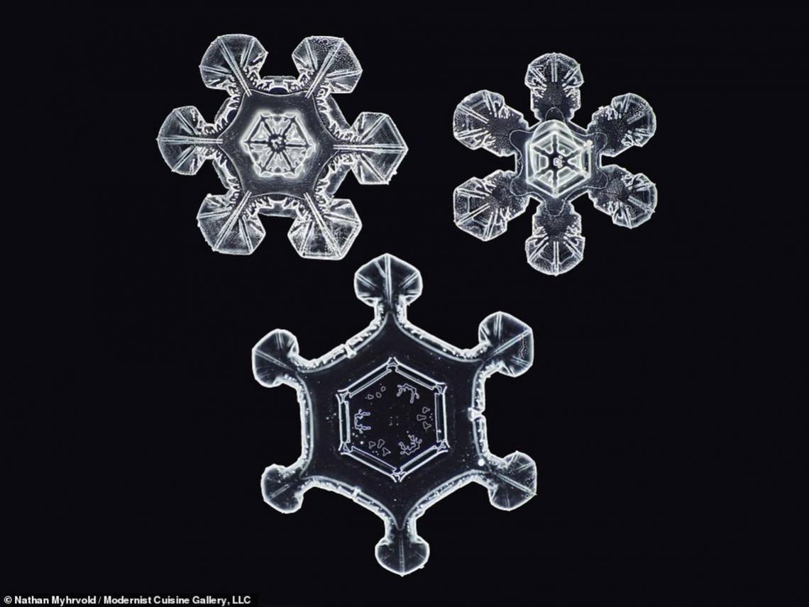 copo-nieve2