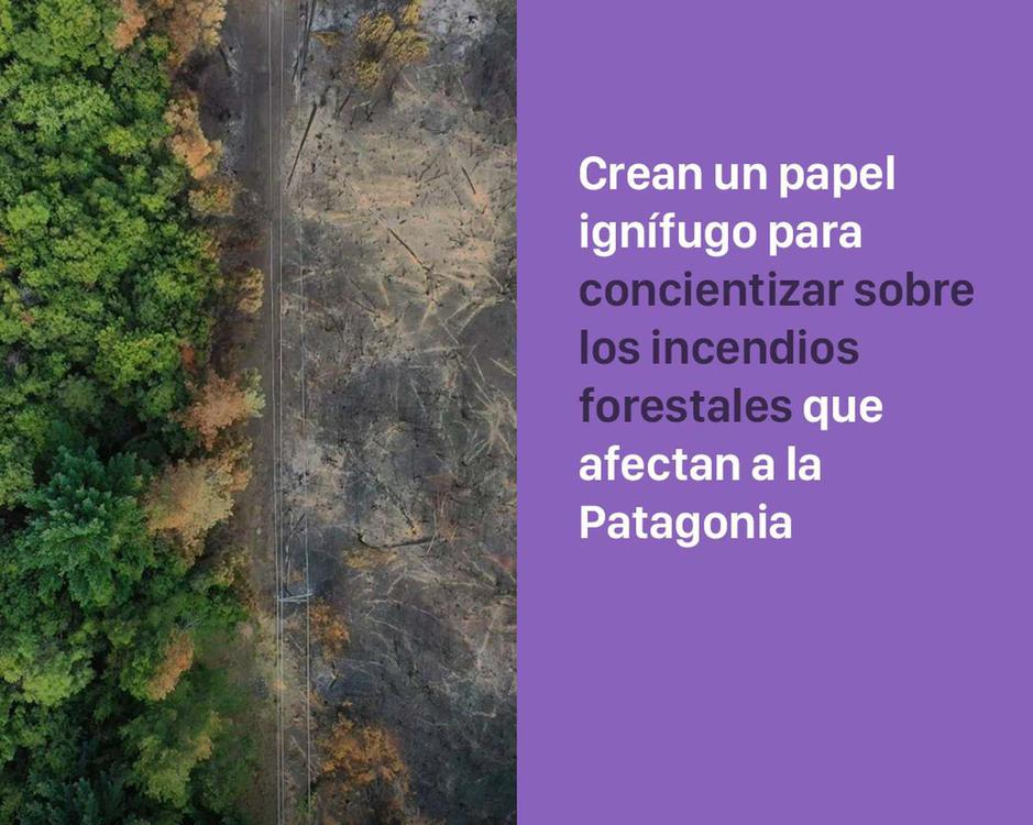 incendios_forestales_papel