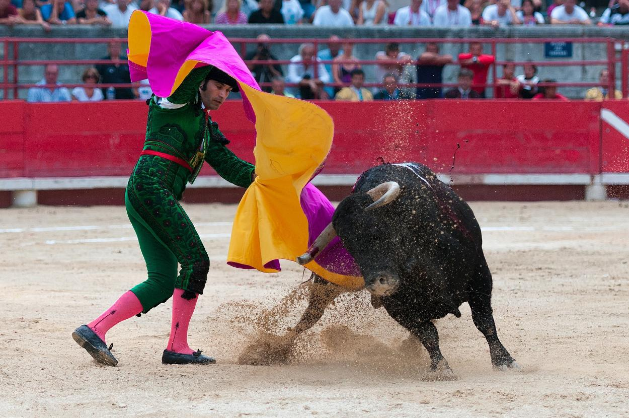 1606949560_archive_bullfight_1957719_1920_rz1250